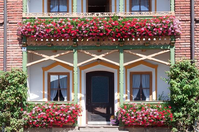 Kwiaty i rośliny balkonowe i ogrodowe